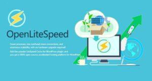 LiteSpeed/OpenLiteSpeed环境一键安装